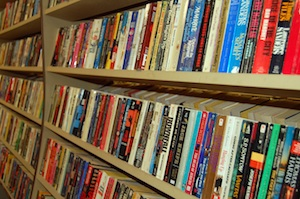 Books on shelves by Julia Freeman-Woolpert