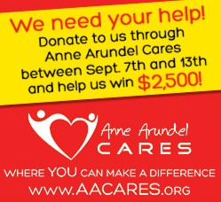 Post image for Help us win the AACares challenge grant!